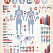 Human health infographics vector 01 free