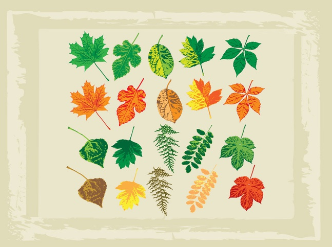 Full Color Vector Leaves free