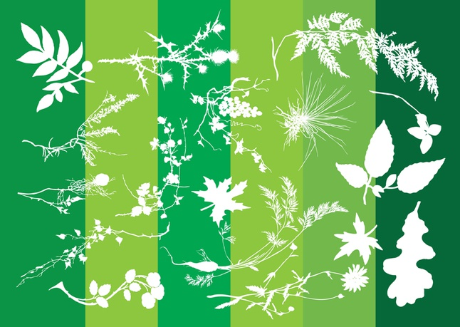 Plants Silhouettes Nature Graphics vector free