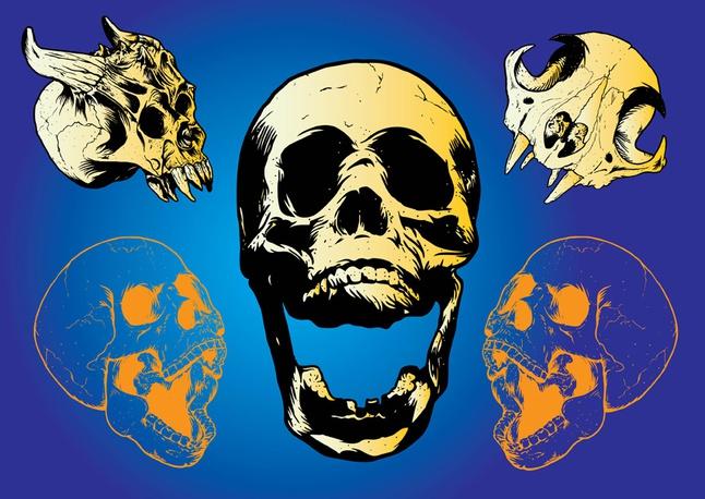 Scary Skulls vector free