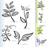 Simple leaf creative vector set 05 free