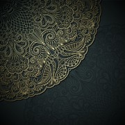 Lace decorative pattern vector background 02 free