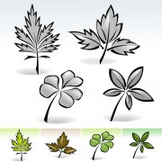 Simple leaf creative vector set 03 free