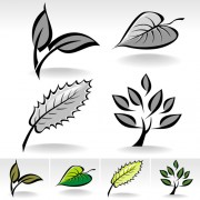 Simple leaf creative vector set 02 free
