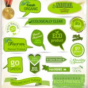Green natural ribbon with labels vector free