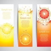 Orange juice drinks banner vector graphics free