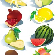 Realistic fruits icons vector 01 free