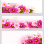 Flower with grunge vector banner free