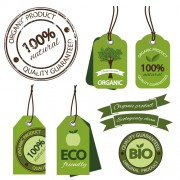 Eco ribbon with tags design vector free