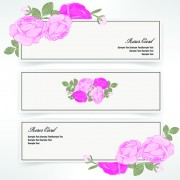 Pink rose banner vector 01 free