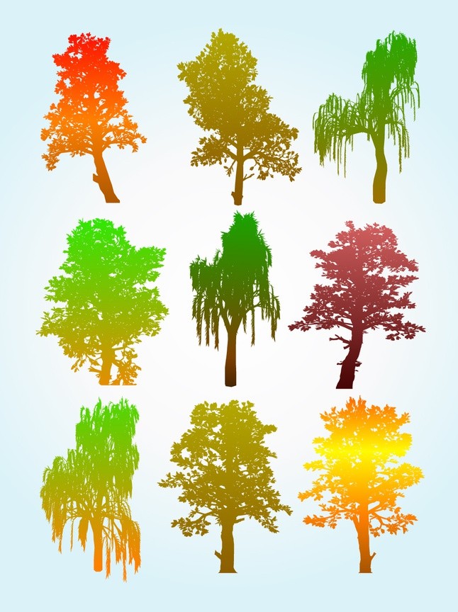 Colorful Tree Silhouette Graphics vector free