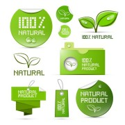 Creative natural product stickers and labels vector 01 free