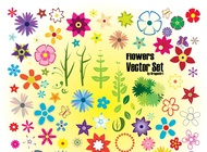 Colorful Summer Flowers vector free