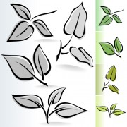 Simple leaf creative vector set 04 free