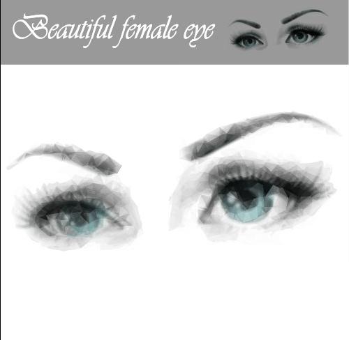 Beautiful female eye vector graphics free