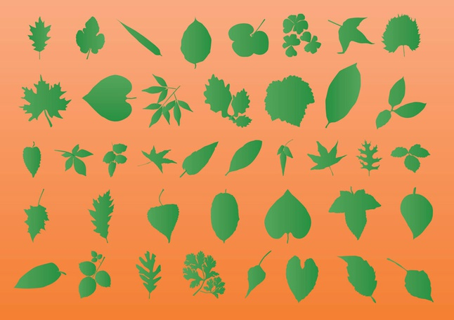 Leaf Vector Silhouettes free