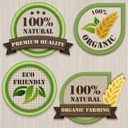 Green eco labels vector set free