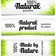 Green grass with sale banner vector free