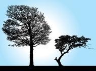Tree Silhouette Vectors free