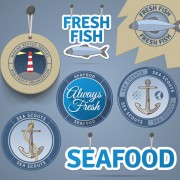Retro tag and badge sea elements vector free