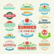 Vintage summer elements labels vector 04 free
