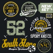 Vintage T-shirt labels creative vector 02 free