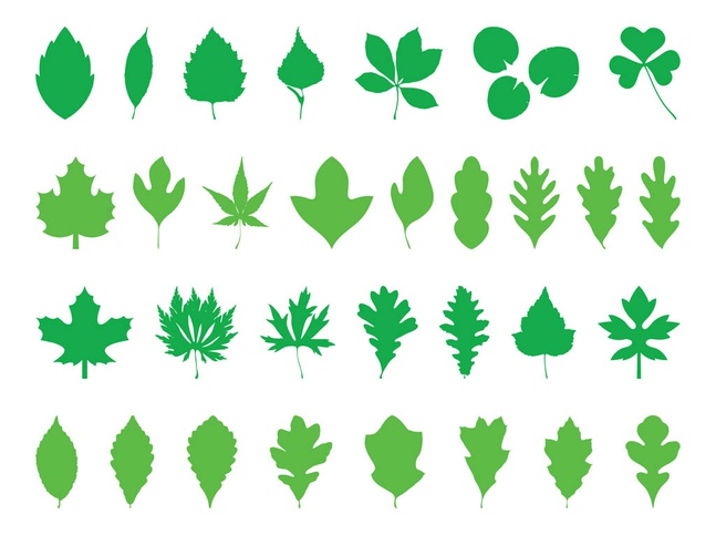 Leaves Silhouettes Pack vector free