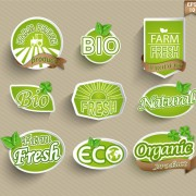 Eco with organic food stickers vector free