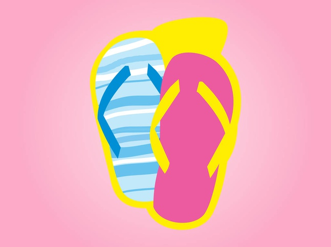 Colorful Flip-Flops vector free