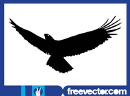 Flying Eagle Silhouette Graphics vector free