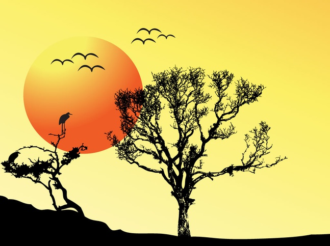 Tree Sunset Background vector free