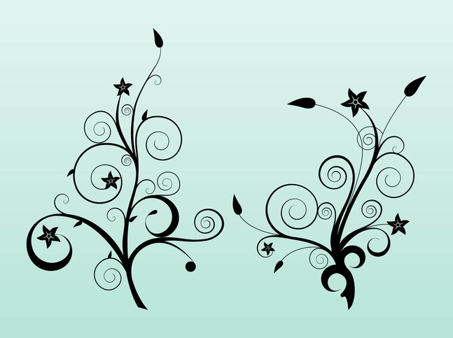 Star Flowers Vector free