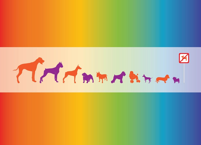 Vector Dogs Graphics free