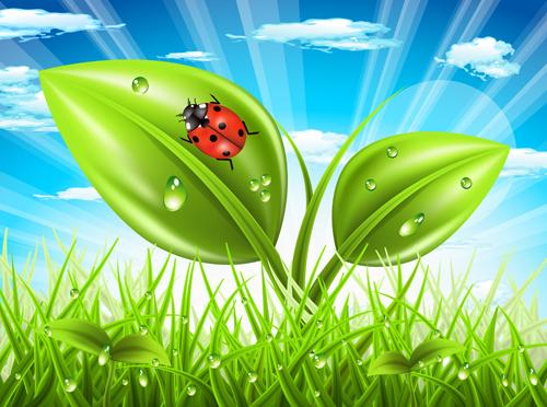 Vibrant spring elements vector background art 01 free