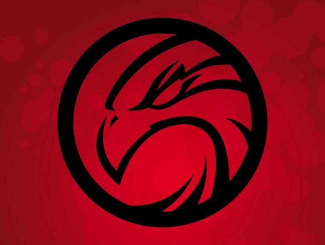 Hawk Vector Logo free