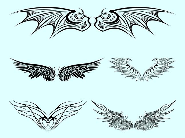 Pairs Of Wings vector free