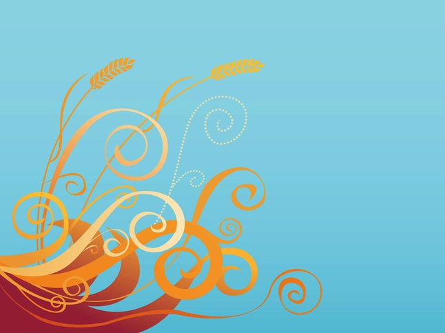 Wheat Background vector free