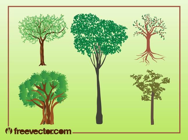 Vector Trees Illustrations free