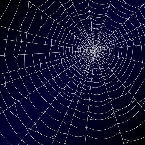Vector spider web design background graphics 04 free