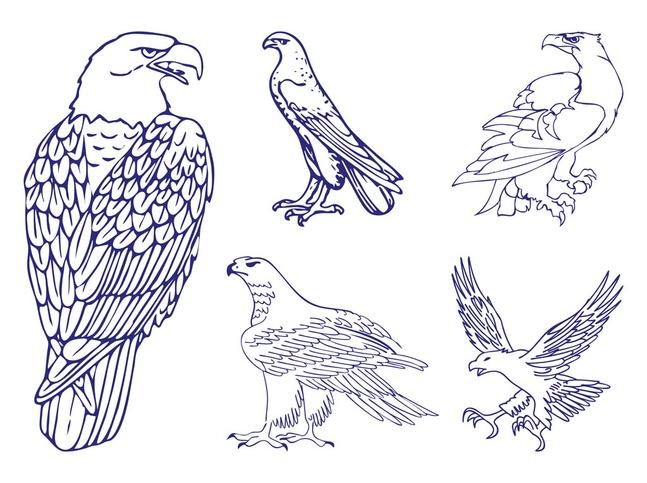 Eagle Graphics Set vector free