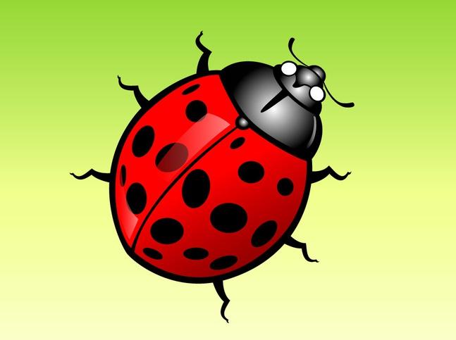 Lady Bug Cartoon vector free