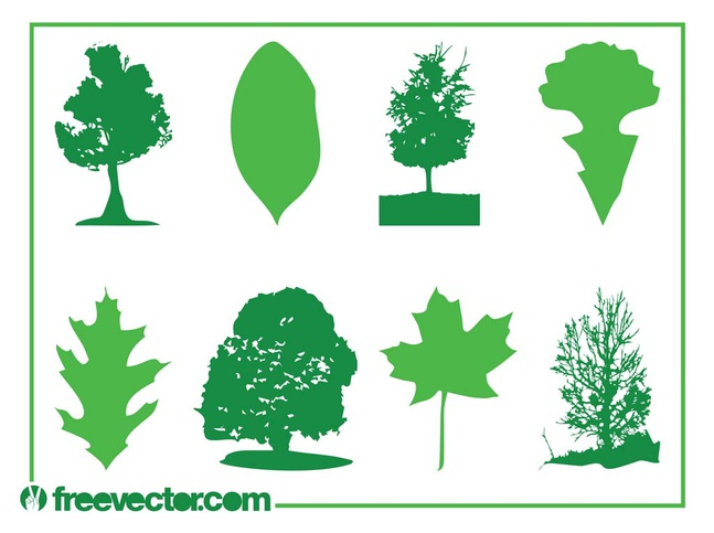 Leaves And Trees vector free