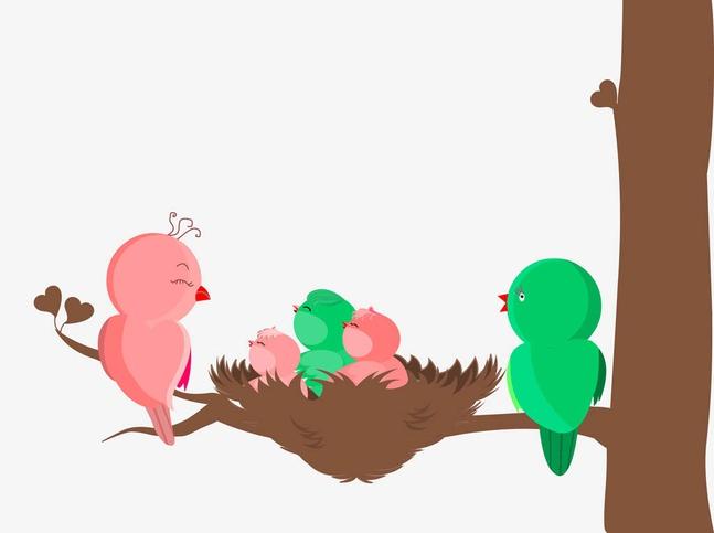 Bird Family Vector free