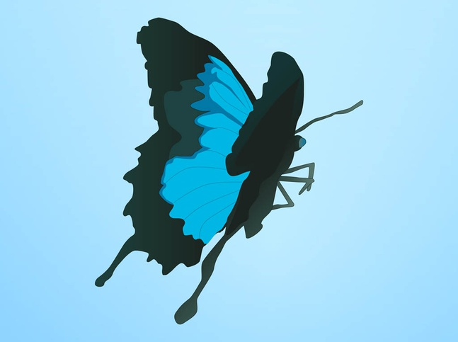 Blue Butterfly Vector free