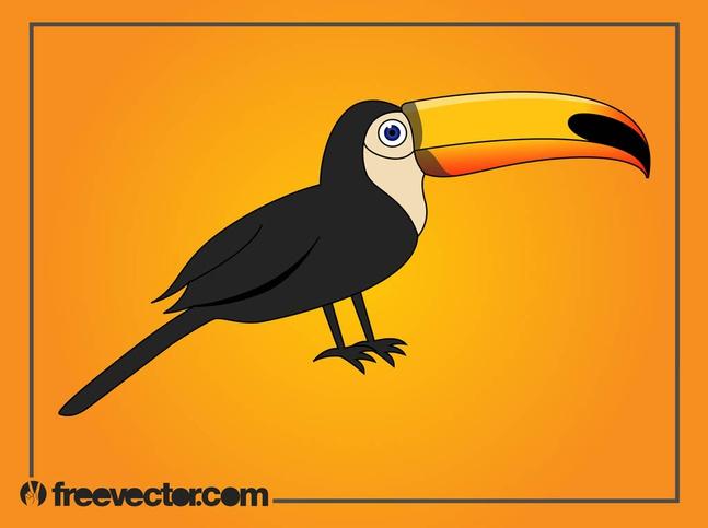 Cartoon Toucan vector free