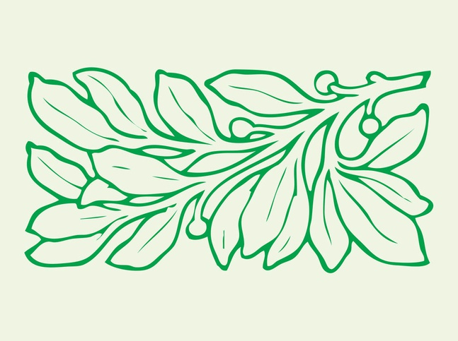 Leaves Graphics vector free