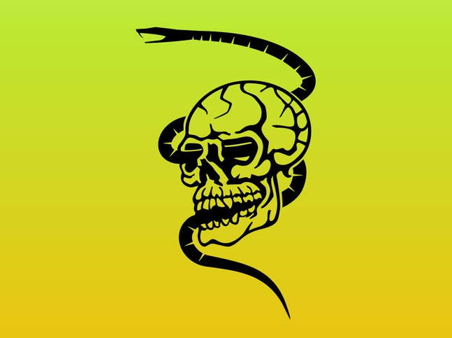 Skull and Snake Graphics vector free