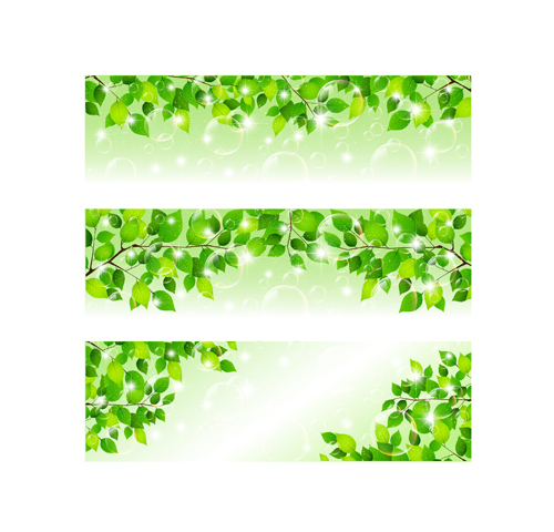 Bubble and tree leaves vector background 02 free
